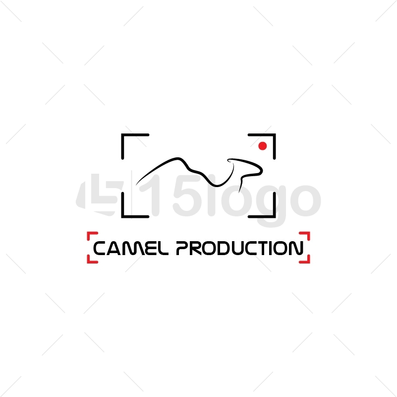 Camel Production