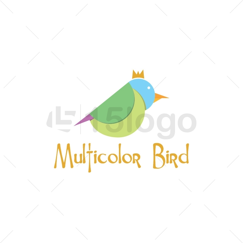 Multicolor Bird