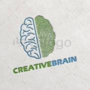 Creative-Brain-1