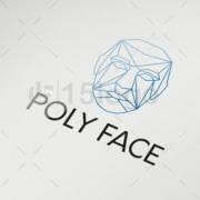 Poly-Face-1