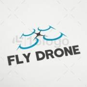 fly drone creative logo