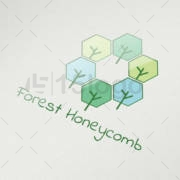 forest-honeycomb-1