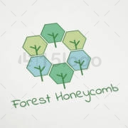 forest-honeycomb-2
