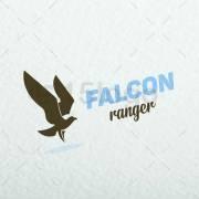 Falcon-ranger-1