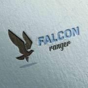 Falcon-ranger-2